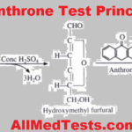 anthrone test principle