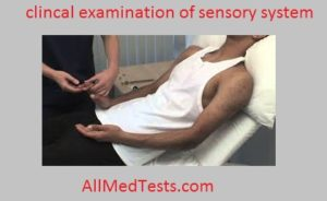 clincal examination of sensory system