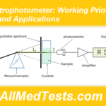 Spectrophotometer: Working Principle, Use and Applications