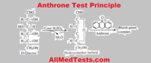 anthrone test principle