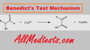 benedict's test mechanism