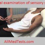 clincal examination of sensory system